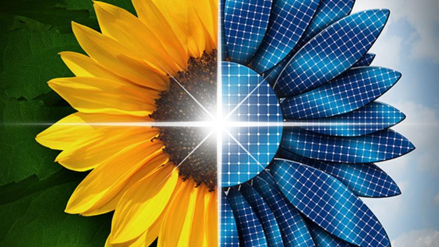 25% a minimális megújuló energia részaránya